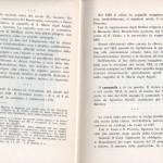 Raule 27