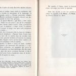 Raule 55