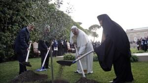 Shimon Peres, Abu Mazen, Papa Francesco, Bartolomeo I piantano un ulivo