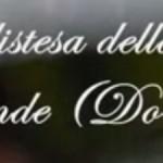 Campane dei SS. Vitale e Agricola Martiri in Bologna 6